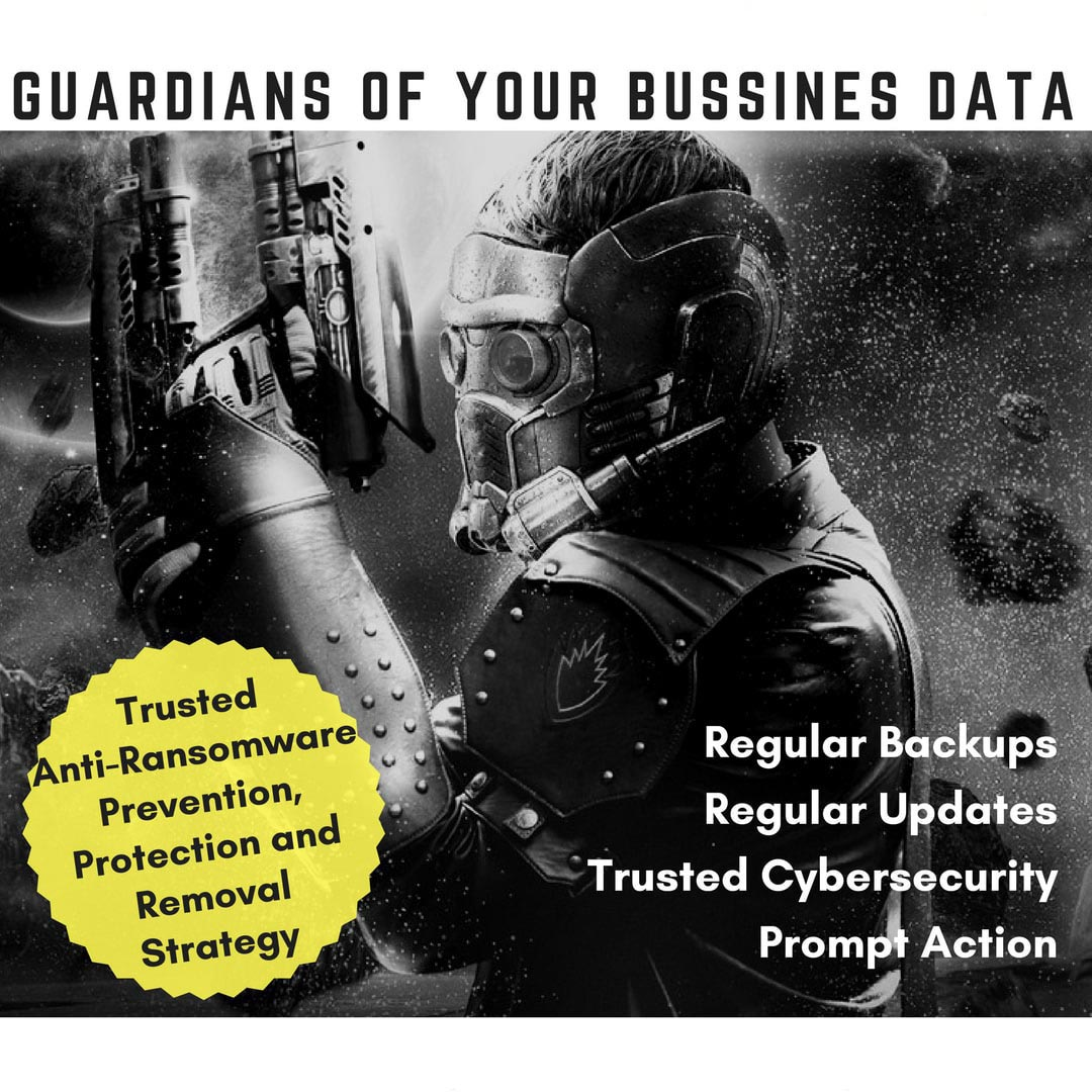 Guardians of Your Business Data - Secure Networks INC Anti-Ransom Strategy