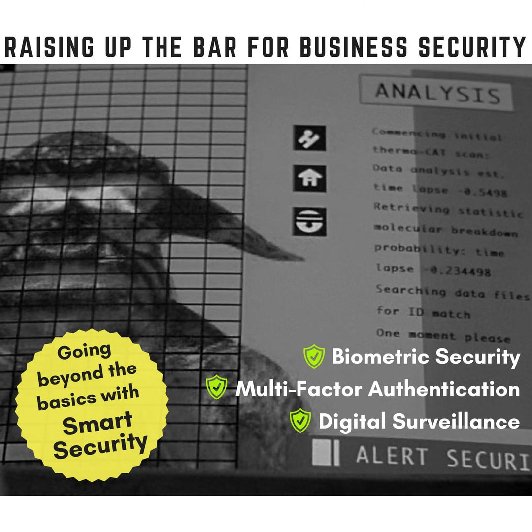 Raising up the bar for business security - Secure Networks INC
