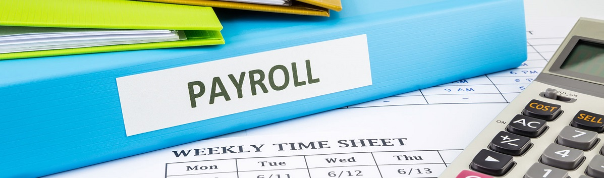 Small Business - Payroll Software